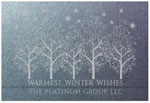 Checkerboard Corporate Holiday Greeting Cards - Silver Boughs (HLC-CSA-A)