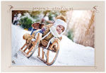 Checkerboard Holiday Photo Cards - Frosty Fun (HLG-YAF-N)