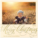 Checkerboard Holiday Photo Cards - Gleaming Delight (HLG-YIW-M)