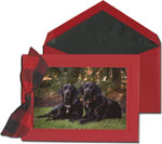 William Arthur Holiday Photo Cards - Triple Debossed Scarlet Red (#29-64744-72066-100164-100157)