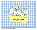 Dinky Designs Foldover Notes - Daisy Flower Box (NCV-129D-SP)