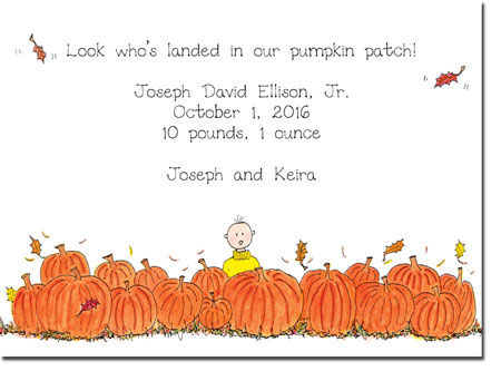 Blue Mug Designs Birth Announcements - Boy Pumpkin Patch