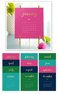 Stacy Claire Boyd - Bright Colors Foil Pressed Desk Calendar & Easel 2017