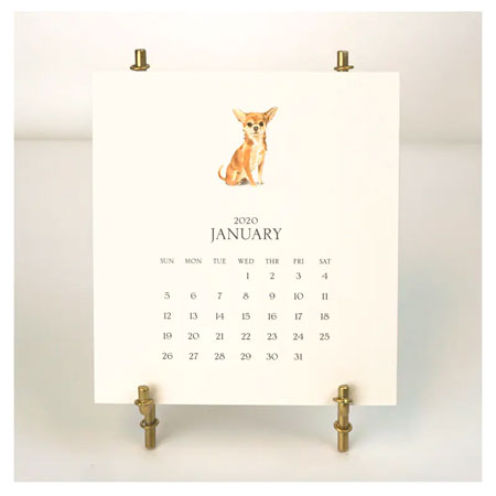 Stacy Claire Boyd - Customized Pet Calendar 2020 Desk Calendar & Easel