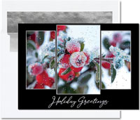 Birchcraft Studios Holiday Greeting Cards - Morning Frost