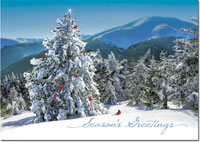 Birchcraft Studios Holiday Greeting Cards - Fresh View