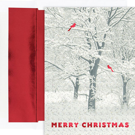Pre-Printed Holiday Cards. by Masterpiece Studios