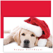 Pre-Printed Boxed Holiday Cards by Masterpiece Studios (Santa Puppy)
