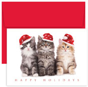 Pre-Printed Boxed Holiday Cards by Masterpiece Studios (Christmas Kittens)