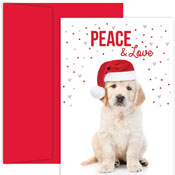 Pre-Printed Boxed Holiday Cards by Masterpiece Studios (Christmas Lab)