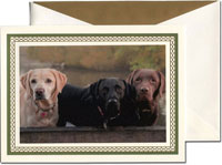 William Arthur Holiday Photo Mount Cards - Green and Gold Lattice