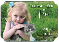 Modern Posh Valentine's Day Photo Cards - All You Need is Love and a Cat